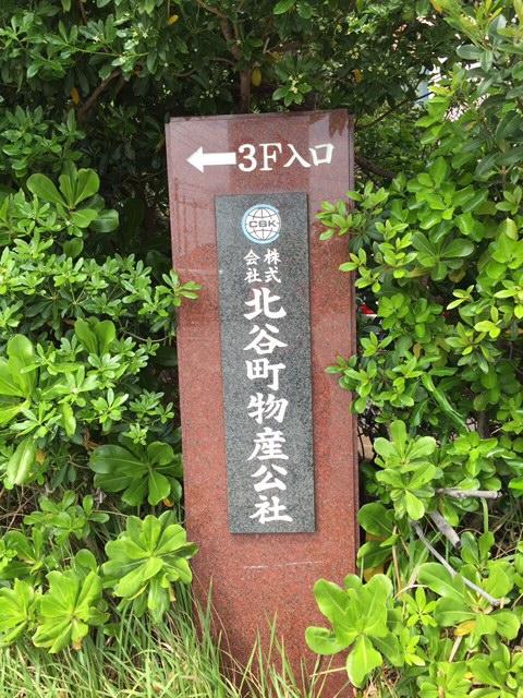ファイル 1353-2.jpg